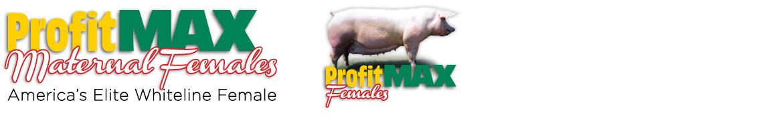 profit-max-females3